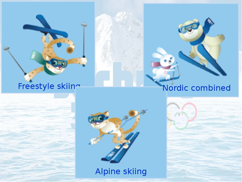 Freestyle skiing Olympic Sports Alpine skiing Nordic combined