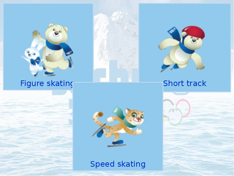Figure skating Olympic Sports Short track Speed skating