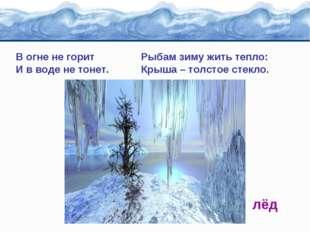 В огне не горит Рыбам зиму жить тепло: И в воде не тонет. Крыша – толстое сте