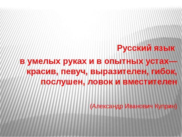 Русский язык в умелых руках и в опытных устах— красив, певуч, выразителен, г...