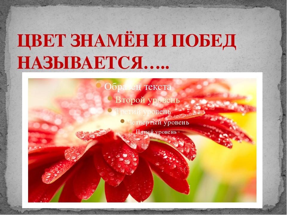 ЦВЕТ ЗНАМЁН И ПОБЕД НАЗЫВАЕТСЯ…..