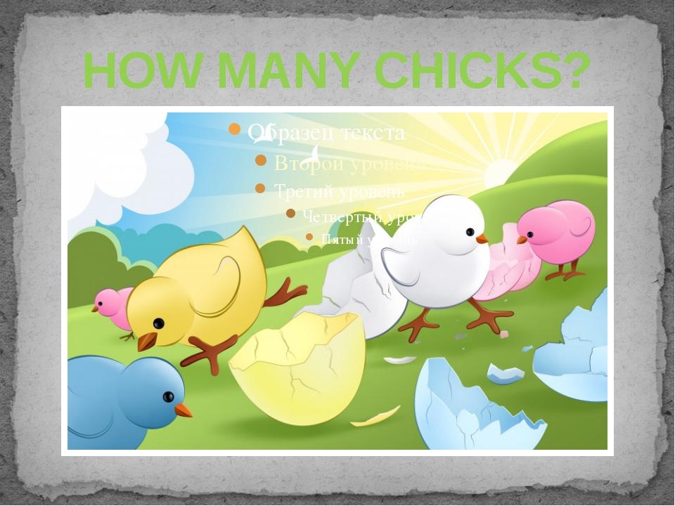 HOW MANY CHICKS?
