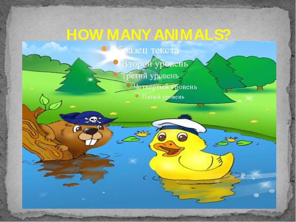 HOW MANY ANIMALS?