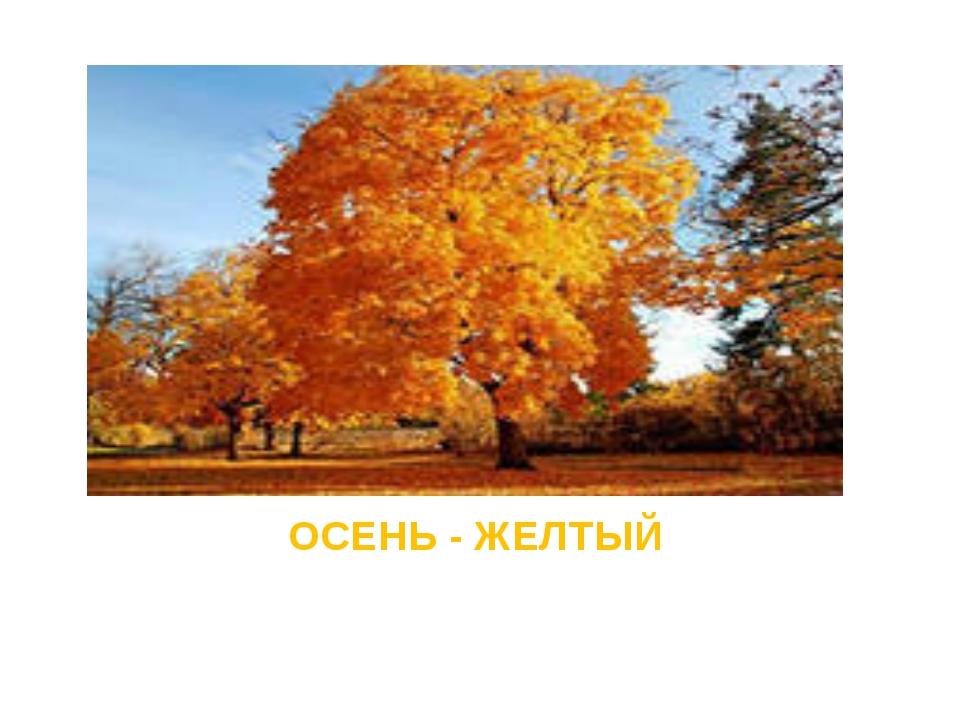 ОСЕНЬ - ЖЕЛТЫЙ