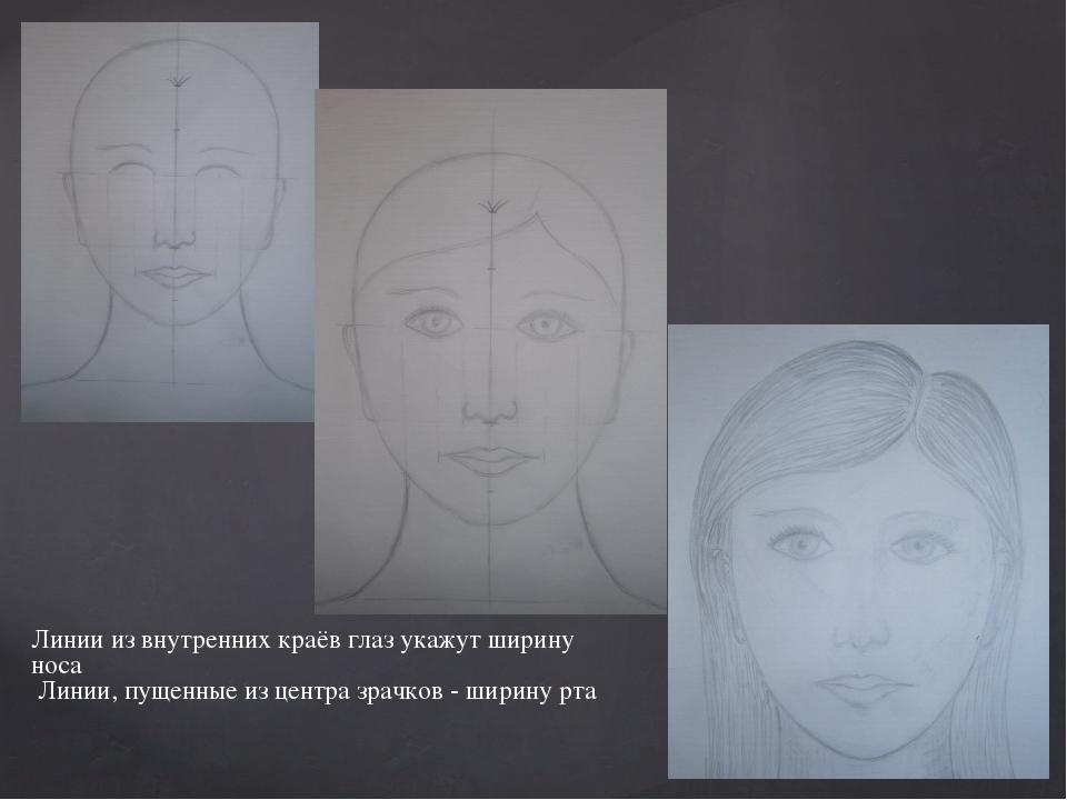 Линии из внутренних краёв глаз укажут ширину носа Линии, пущенные из центра з...