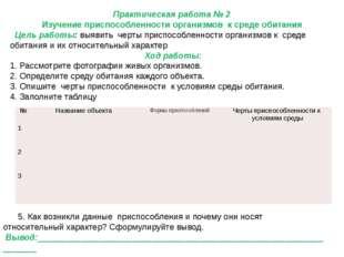 Практическая работа № 2 Изучение приспособленности организмов к среде обитани