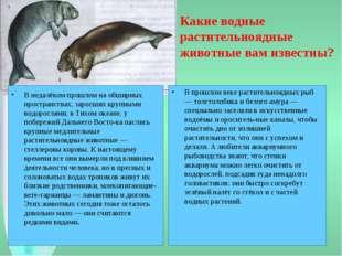 Какие водные растительноядные животные вам известны? В недалёком прошлом на о