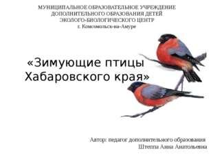 «Зимующие птицы Хабаровского края» Автор: педагог дополнительного образовани