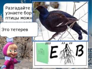 Разгадайте ребус и узнаете бормотание какой птицы можно услышать в зимнем лес