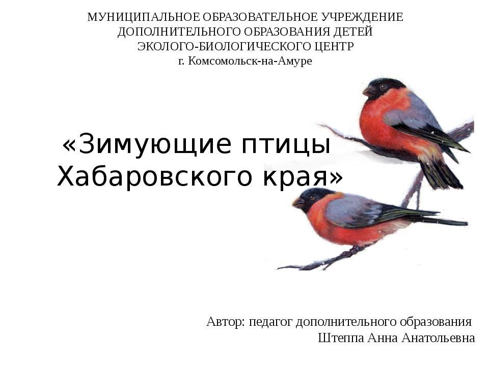 «Зимующие птицы Хабаровского края» Автор: педагог дополнительного образовани...
