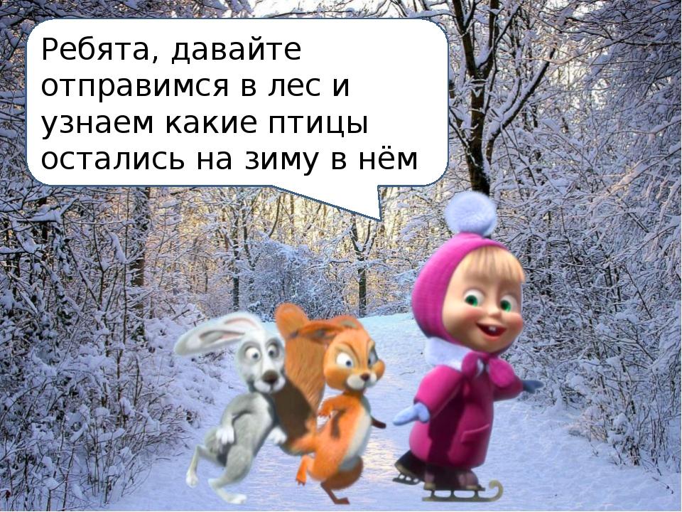 Ребята, давайте отправимся в лес и узнаем какие птицы остались на зиму в нём