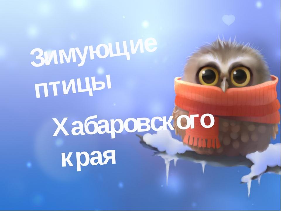 Зимующие птицы Хабаровского края