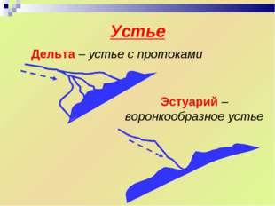 Устье Дельта – устье с протоками Эстуарий – воронкообразное устье