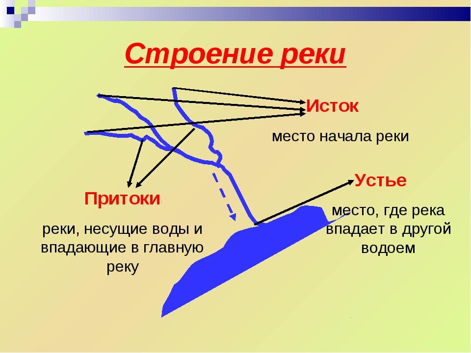 Строение реки Устье место, где река впадает в другой водоем Притоки реки, нес...