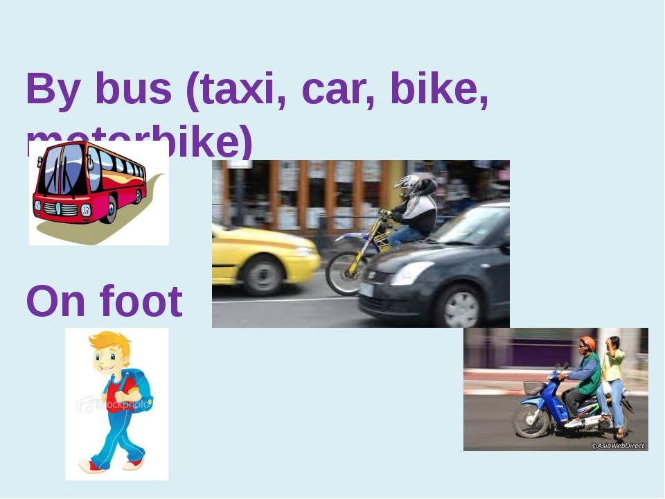 By bus (taxi, car, bike, motorbike) On foot
