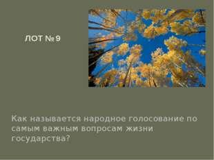 ЛОТ № 9 Как называется народное голосование по самым важным вопросам жизни го