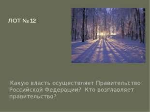 ЛОТ № 12 Какую власть осуществляет Правительство Российской Федерации? Кто во
