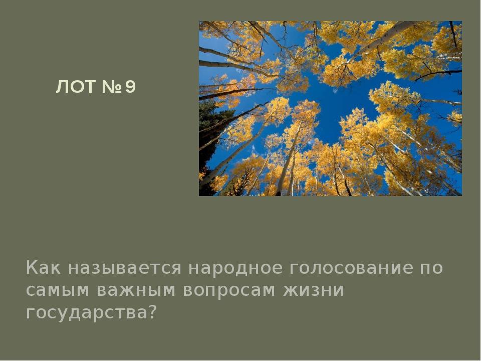 ЛОТ № 9 Как называется народное голосование по самым важным вопросам жизни го...