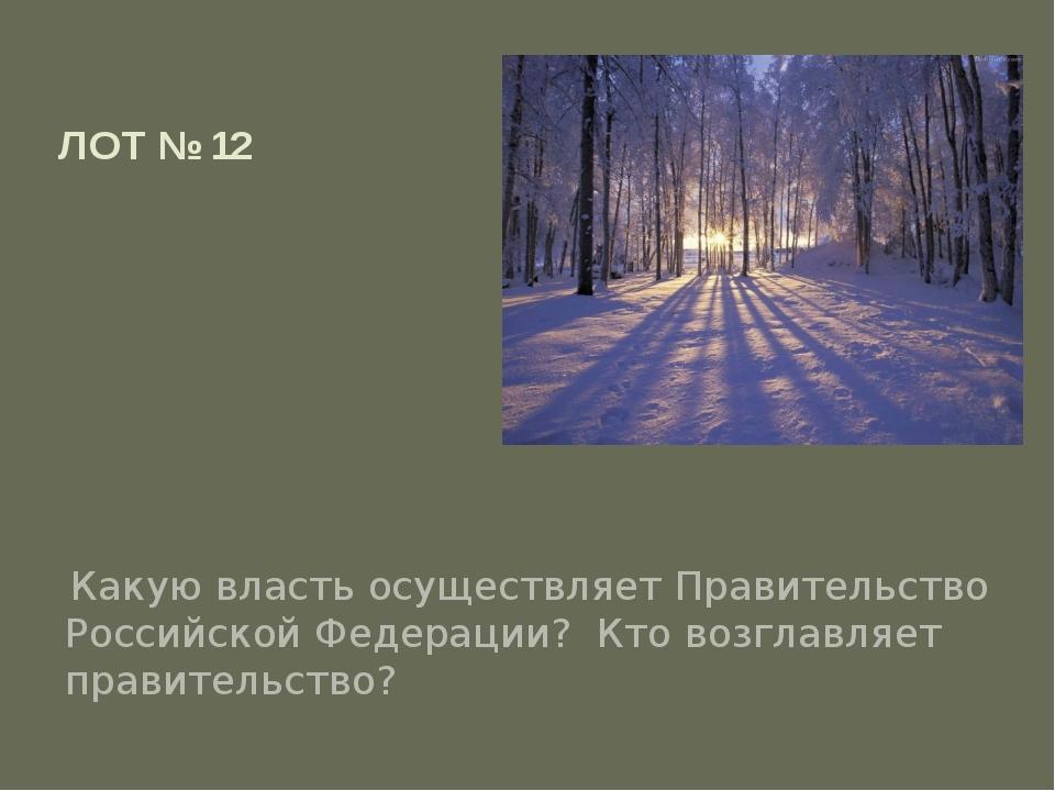 ЛОТ № 12 Какую власть осуществляет Правительство Российской Федерации? Кто во...