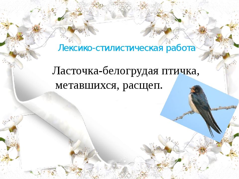 Лексико-стилистическая работа Ласточка-белогрудая птичка, метавшихся, расщеп.