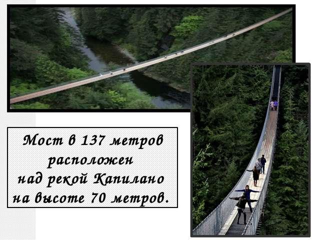 Мост в 137 метров расположен над рекой Капилано на высоте 70 метров.