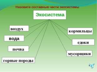 Назовите составные части экосистемы Экосистема экосистема