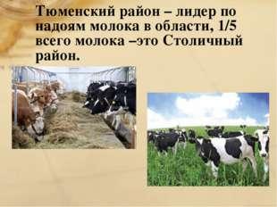 Тюменский район – лидер по надоям молока в области, 1/5 всего молока –это Сто