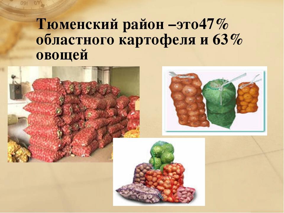 Тюменский район –это47% областного картофеля и 63% овощей