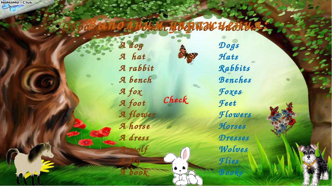 Образуйте множественное число: Выполним упражнения: A dog A hat A rabbit A be...