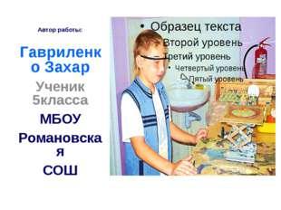 Автор работы: Гавриленко Захар Ученик 5класса МБОУ Романовская СОШ