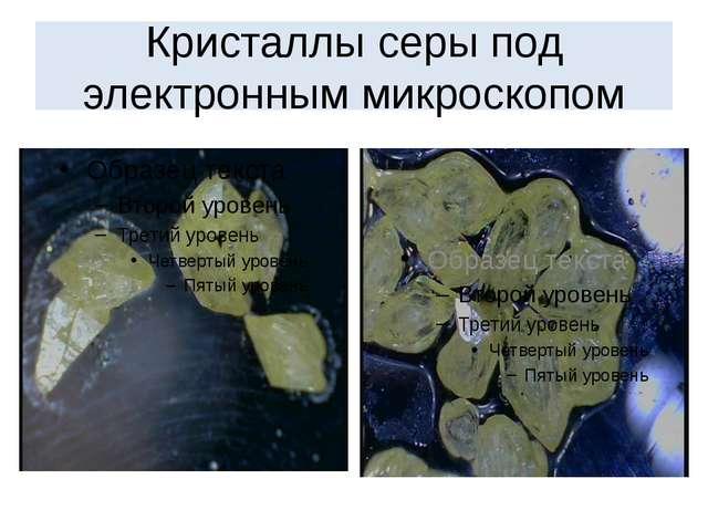 Кристаллы серы под электронным микроскопом