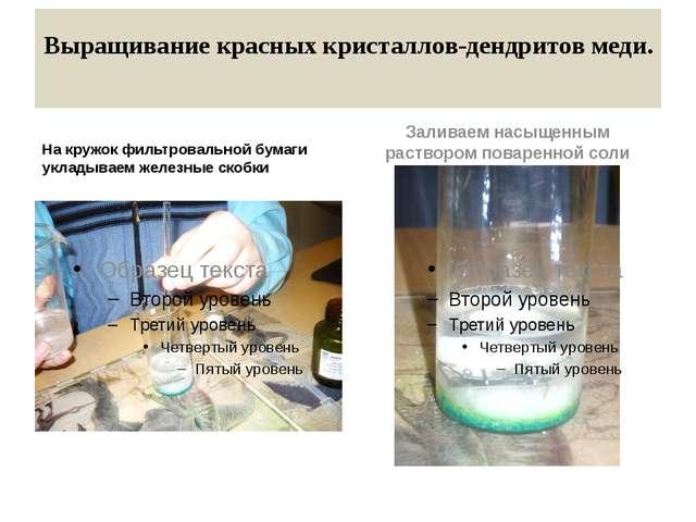 Выращивание красных кристаллов-дендритов меди. На кружок фильтровальной бумаг...