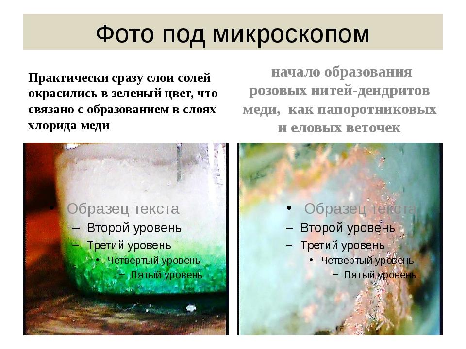 Фото под микроскопом Практически сразу слои солей окрасились в зеленый цвет,...