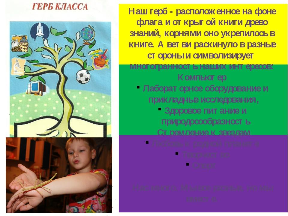 Наш герб - расположенное на фоне флага и открытой книги древо знаний, корням...