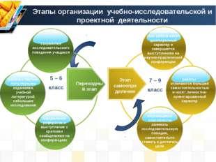 Этапы организации учебно-исследовательской и проектной деятельности 5 – 6 кл