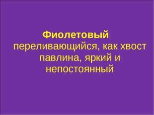 Фиолетовый переливающийся, как хвост павлина, яркий и непостоянный
