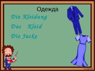 Одежда Die Kleidung Das Kleid Die Jacke