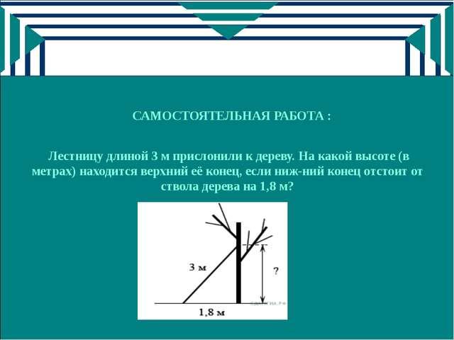 САМОСТОЯТЕЛЬНАЯ РАБОТА : Лестницу длиной 3 м прислонили к дереву. На какой вы...