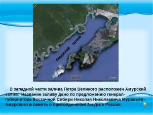 В западной части залива Петра Великого расположен Амурский залив. Название з