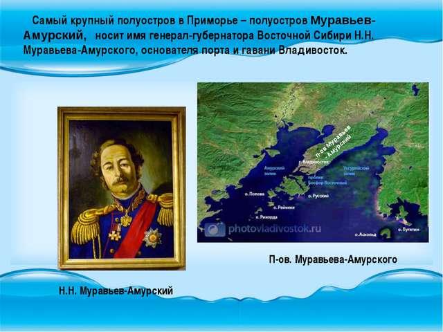 Самый крупный полуостров в Приморье – полуостров Муравьев-Амурский, носит им...