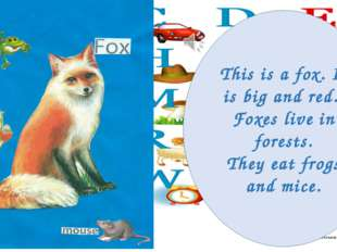 This is a fox. It is big and red. Foxes live in forests. They eat frogs and m