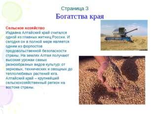 Богатства края Сельское хозяйство Издавна Алтайский край считался одной из г