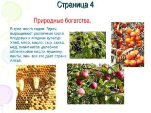 Страница 4 Природные богатства. В крае много садов. Здесь выращивают различны
