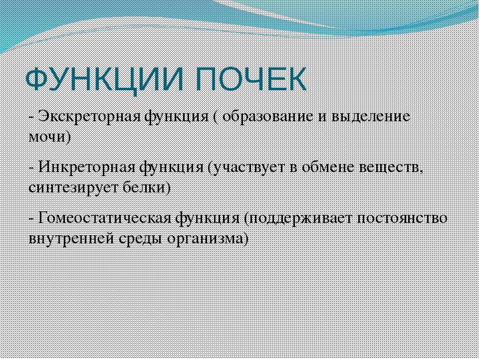 ФУНКЦИИ ПОЧЕК - Экскреторная функция ( образование и выделение мочи) - Инкрет...
