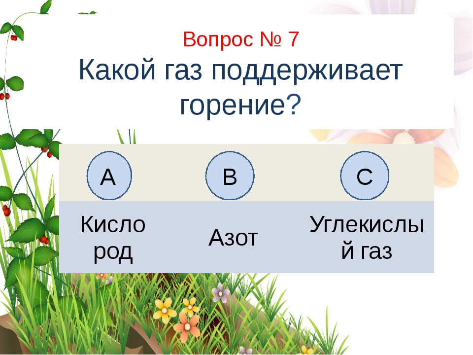 Вопрос № 6 На каком рисунке изображён флаг России? А B C Вопрос № 7 Какой газ...