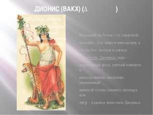 ДИОНИС (ВАКХ) (Διόνυσος) Младший из богов ( от смертной матери) – бог вина и