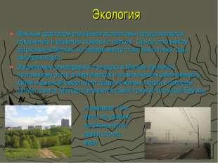 Экология Важным фактором улучшения экосистемы города является сохранение и ра