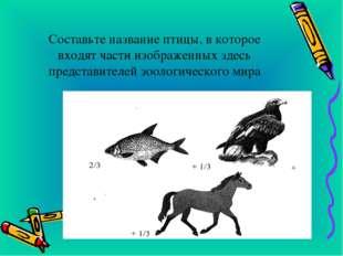 Составьте название птицы, в которое входят части изображенных здесь представ
