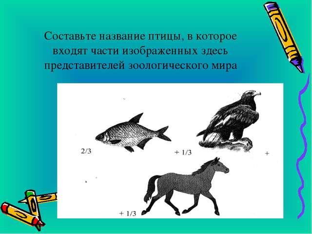 Составьте название птицы, в которое входят части изображенных здесь представ...