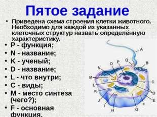 Пятое задание P - функция; N - название; K - ученый; D - название; L - что вн